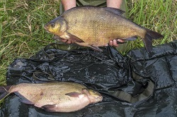 Keith with a brace of bream at 9.12lb and 12.12lb