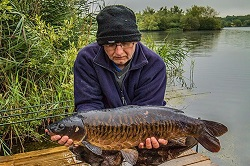 Keith with one of a hand full of fully scaled Mirrors in the lake