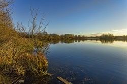 Scenic Photo of Lowther Lake